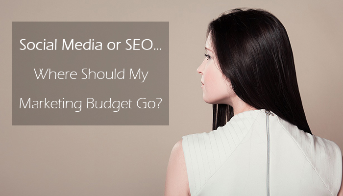 Social Media or SEO…Where Should My Marketing Budget Go? | Mirelle Marketing